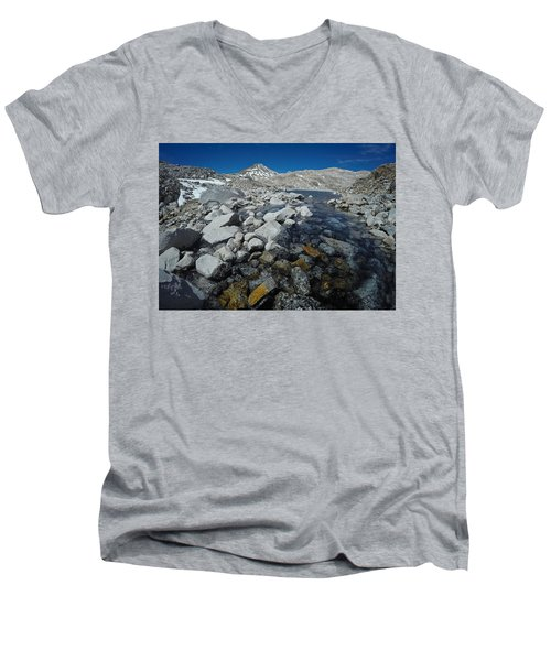 Alpine Blues Men's V-Neck T-Shirt