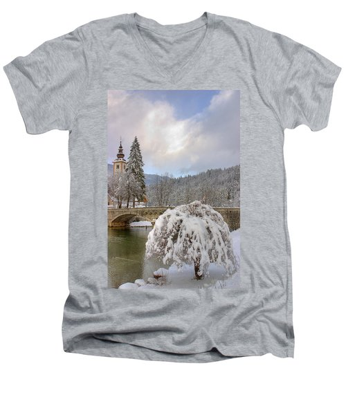 Alpine Winter Beauty Men's V-Neck T-Shirt