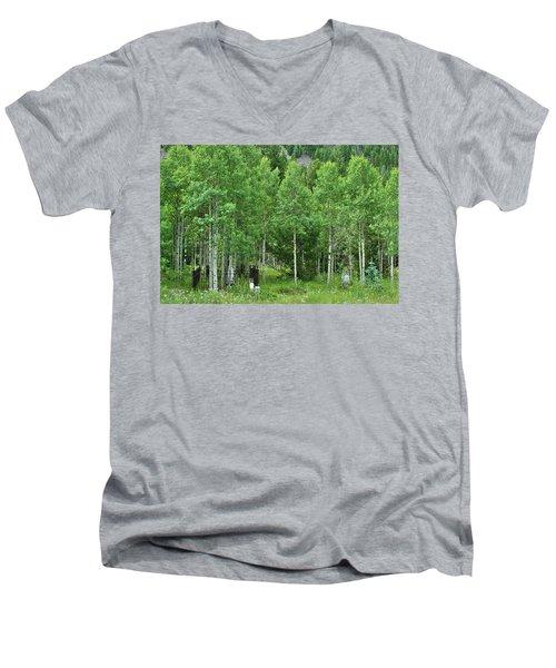 Alvarado Summer Men's V-Neck T-Shirt