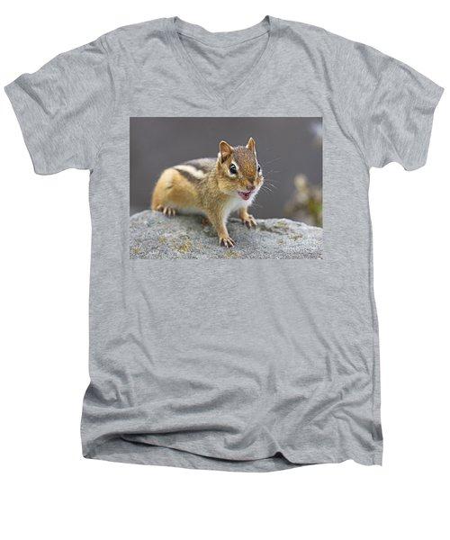 Alvinnn... Men's V-Neck T-Shirt