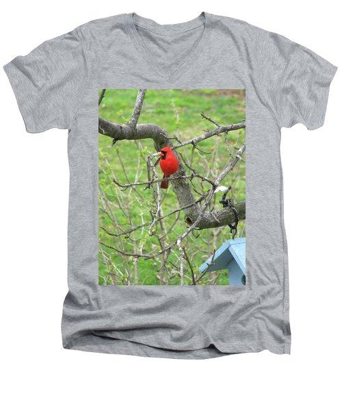 Always With Us -cardinals Men's V-Neck T-Shirt