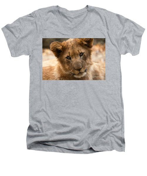 Men's V-Neck T-Shirt featuring the photograph Am I Cute? by Christine Sponchia