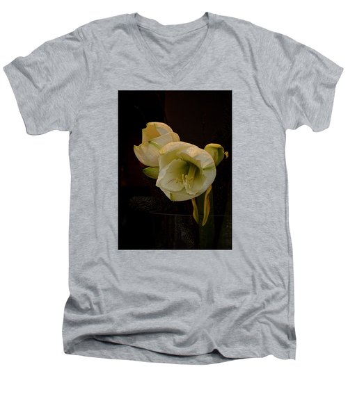 mont Blanc Amaryllis No. 1 Men's V-Neck T-Shirt by Richard Cummings