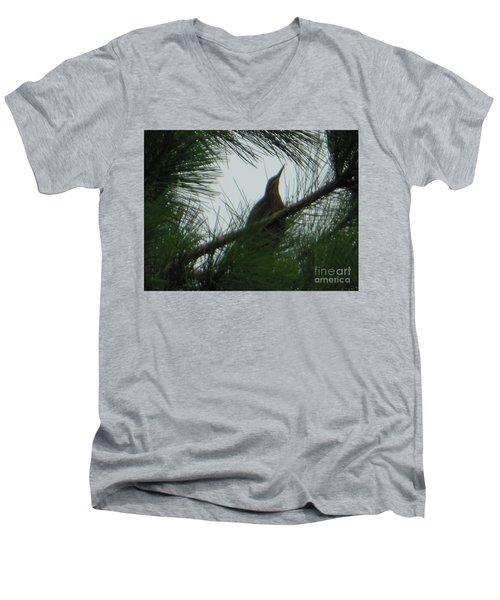 American Bitten Bird Men's V-Neck T-Shirt