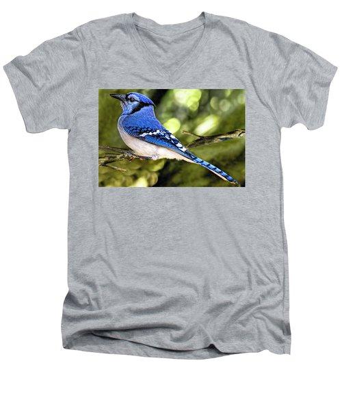 Blue Jay Bokeh Men's V-Neck T-Shirt