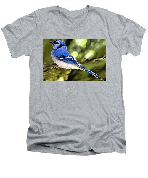 Blue Jay Bokeh Men's V-Neck T-Shirt