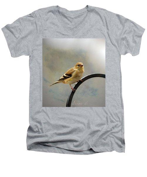 American Goldfinch Men's V-Neck T-Shirt by Diane Giurco