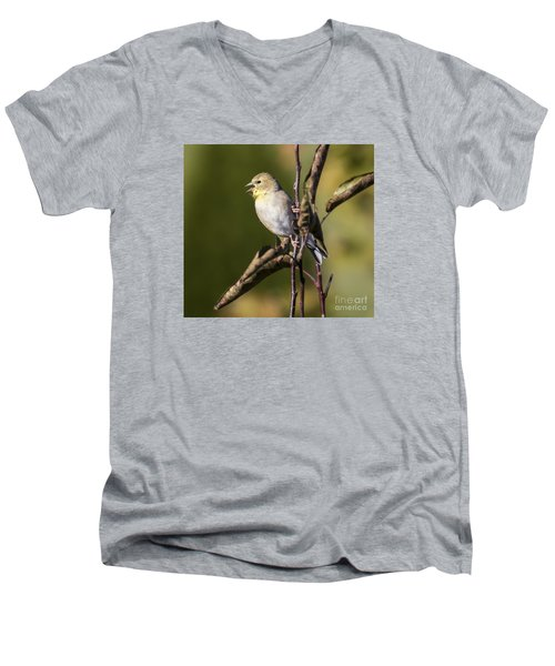 Men's V-Neck T-Shirt featuring the photograph American Goldfinch In Fall Colors  by Ricky L Jones