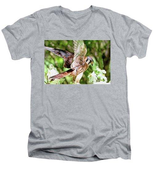 American Kestrel Hawk Men's V-Neck T-Shirt