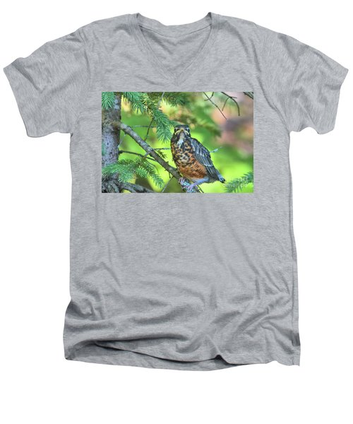 Men's V-Neck T-Shirt featuring the photograph American Robin Fledgling by Debbie Stahre