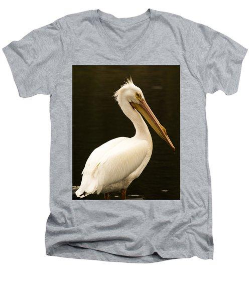 American White Pelican Men's V-Neck T-Shirt