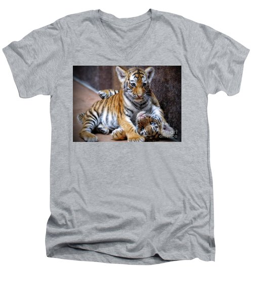 Amur Tiger Cubs Men's V-Neck T-Shirt
