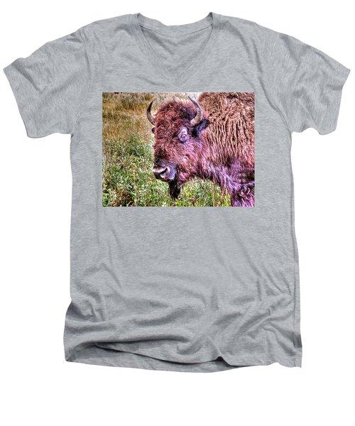 An Astonished Bison Men's V-Neck T-Shirt