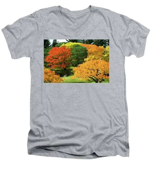 An Explosion Of Color Men's V-Neck T-Shirt