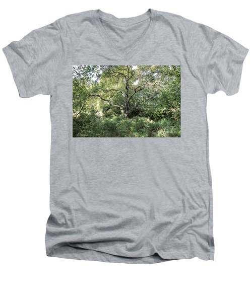 An Old One In The Forest Men's V-Neck T-Shirt