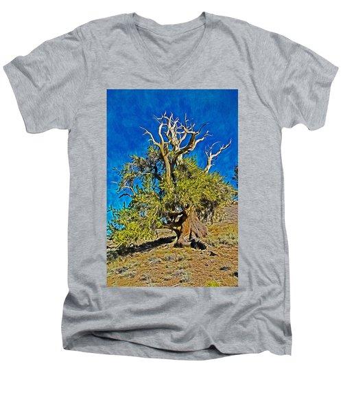 Ancient Bristlecone Pine Men's V-Neck T-Shirt