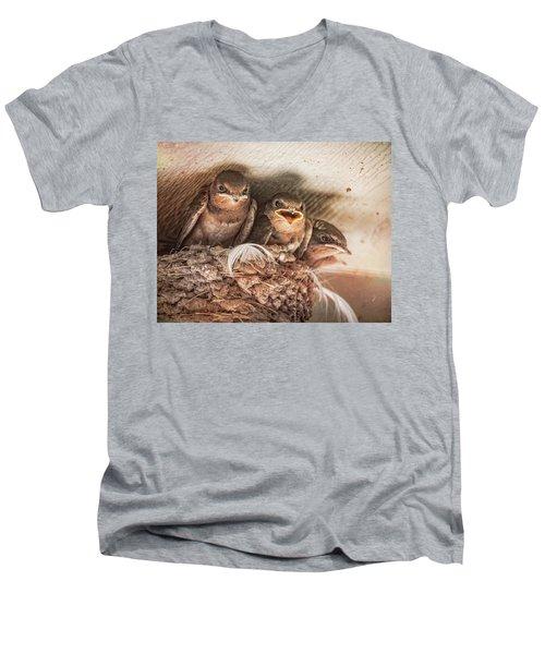 Angry Birds Men's V-Neck T-Shirt