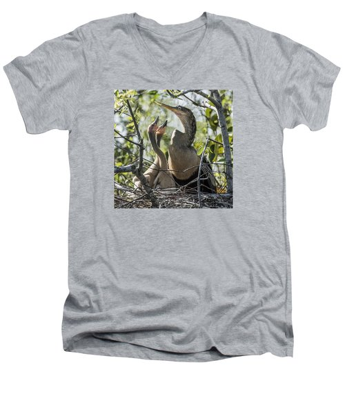 Anhinga In Nest With Her Chicks Men's V-Neck T-Shirt