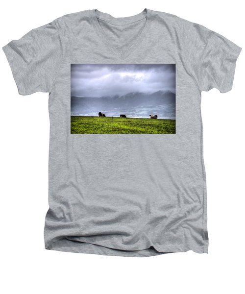 Animals Livestock-03 Men's V-Neck T-Shirt