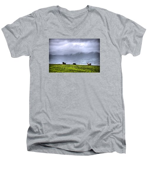 Animals Livestock-03 Men's V-Neck T-Shirt