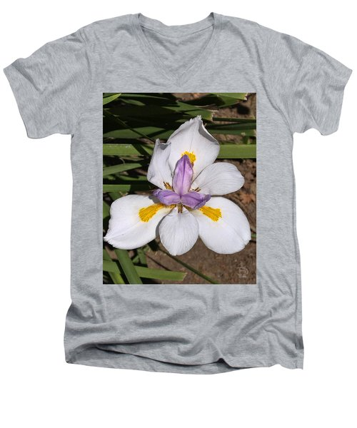 Men's V-Neck T-Shirt featuring the photograph Another Lily by Daniel Hebard