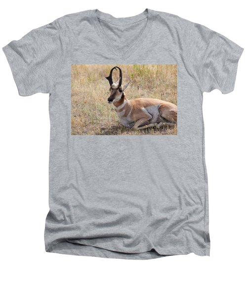 Men's V-Neck T-Shirt featuring the photograph Antelope Or Pronghorn by Fran Riley