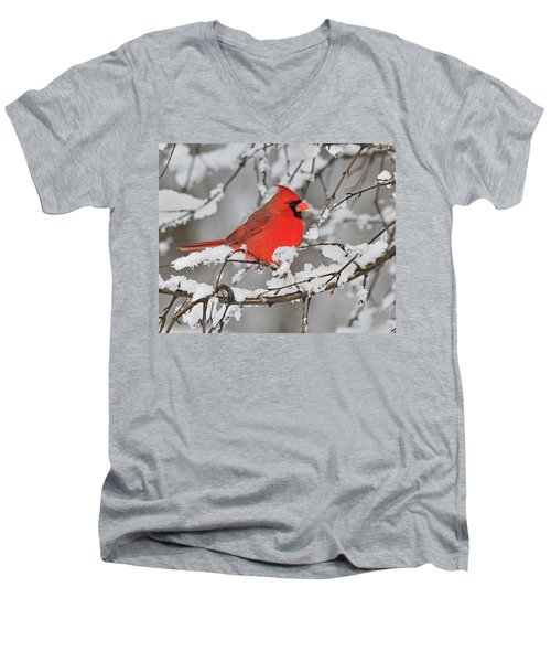 Men's V-Neck T-Shirt featuring the photograph Anticipation by Tony Beck