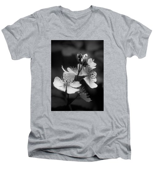 Apple Blossom 2 Men's V-Neck T-Shirt