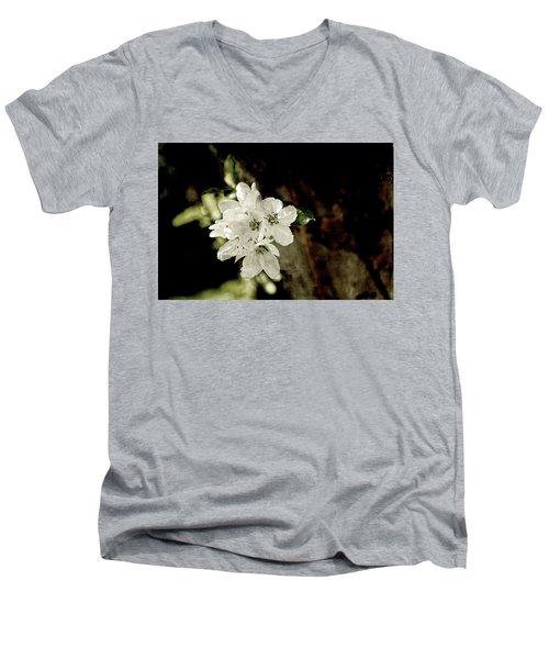 Apple Blossom Paper Men's V-Neck T-Shirt