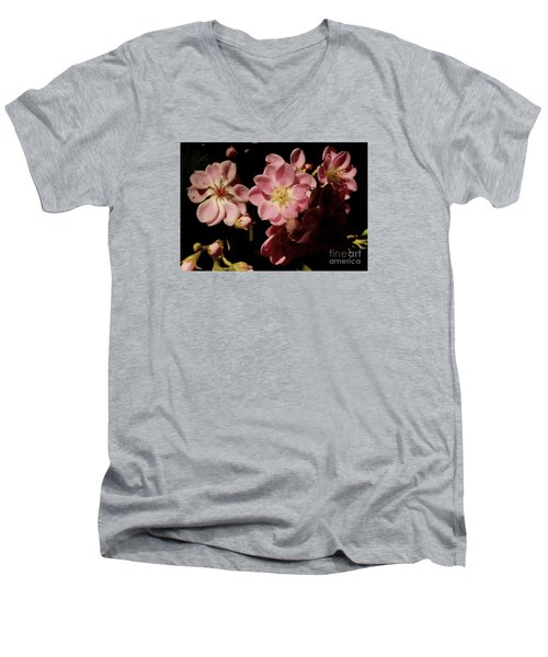 Apple Blossoms IIi Men's V-Neck T-Shirt