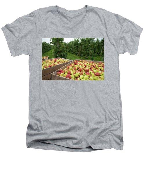 Apple Harvest Men's V-Neck T-Shirt by Hans Engbers