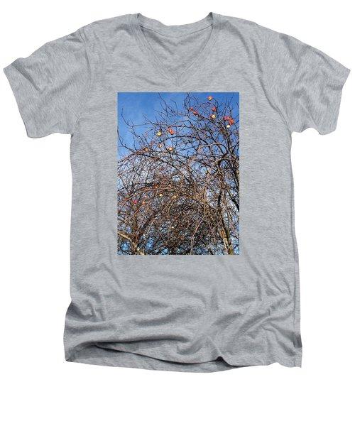 Apples In December Men's V-Neck T-Shirt by Patricia E Sundik