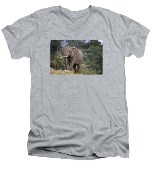 Men's V-Neck T-Shirt featuring the photograph Approaching The Waterhole by Gary Hall