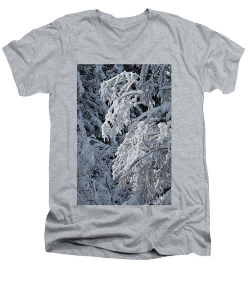 April Snow Men's V-Neck T-Shirt