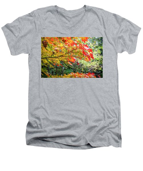 Men's V-Neck T-Shirt featuring the photograph Arboretum Autumn Leaves by Peter Simmons
