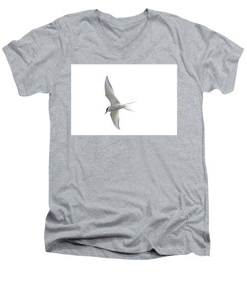 Arctic Tern Flying In Mist Men's V-Neck T-Shirt
