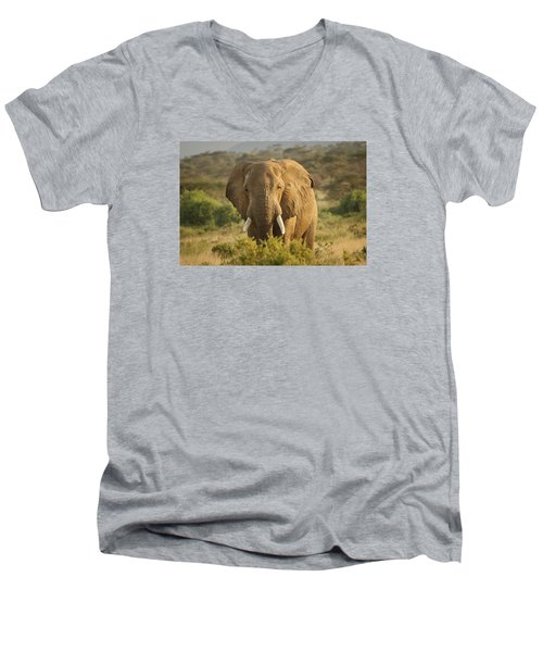 Are You Looking At Me? Men's V-Neck T-Shirt by Gary Hall
