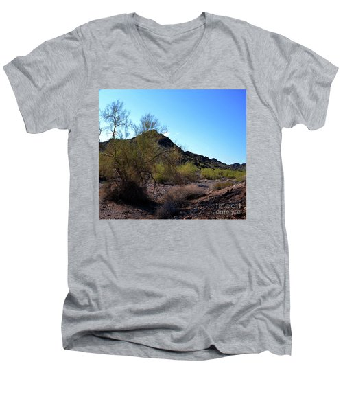 Arizona Desert Men's V-Neck T-Shirt