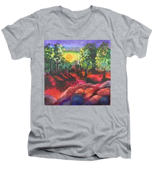 Arizona Sunrise Men's V-Neck T-Shirt