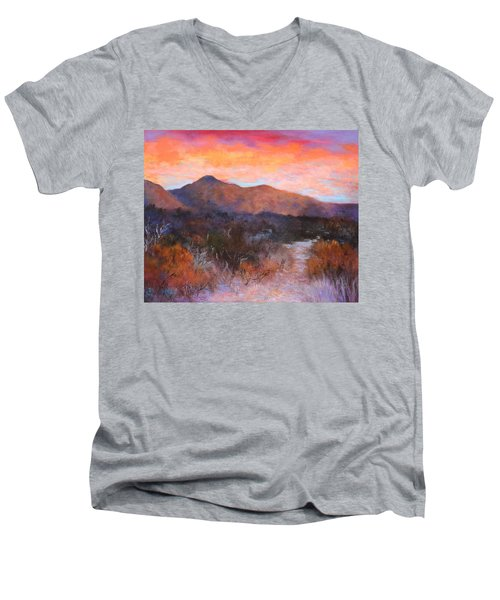 Arizona Sunset 3 Men's V-Neck T-Shirt
