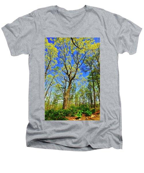 Artsy Tree Series, Early Spring - # 04 Men's V-Neck T-Shirt