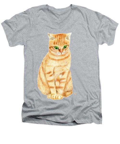 A Ginger Tabby Cat Men's V-Neck T-Shirt