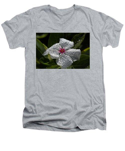 Natures Glitter Men's V-Neck T-Shirt