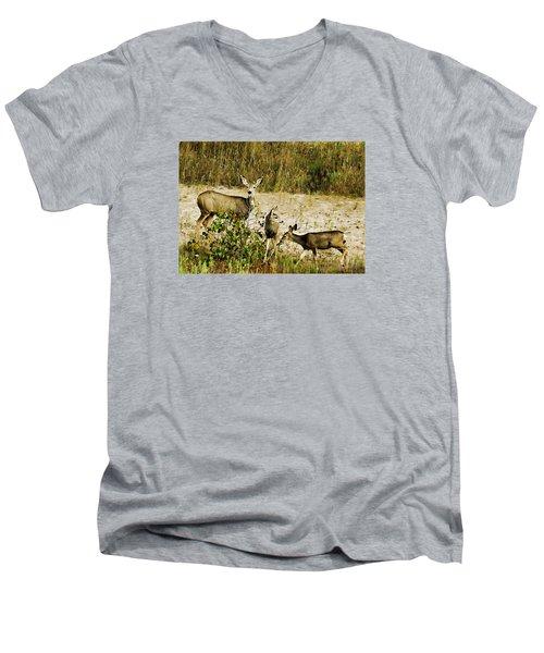 Mule Doe And Her Twins Men's V-Neck T-Shirt by Bill Kesler