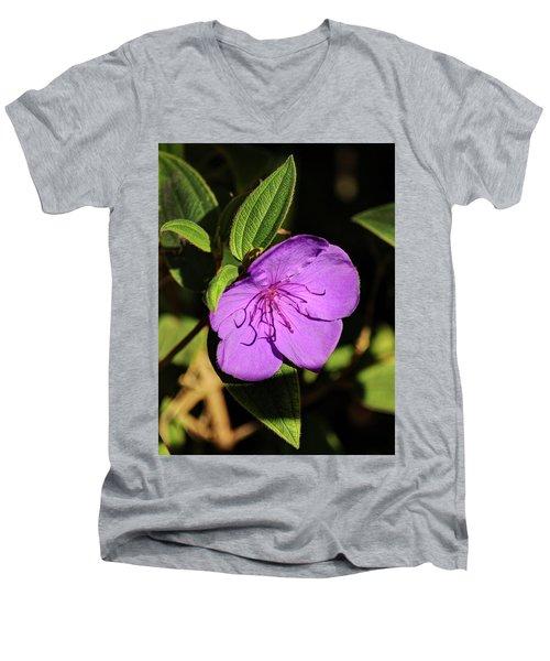Asian Melastome Men's V-Neck T-Shirt
