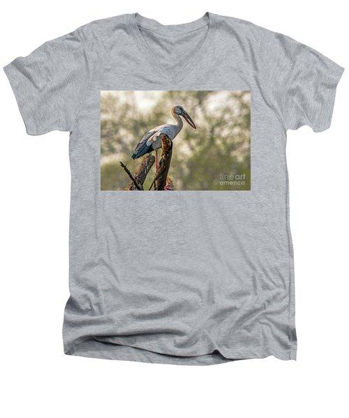 Asian Openbill Men's V-Neck T-Shirt
