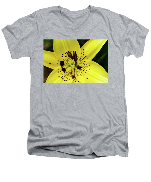 Asiatic Lily Men's V-Neck T-Shirt by Jay Stockhaus