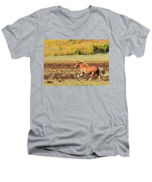 Aspen And Horsepower Men's V-Neck T-Shirt