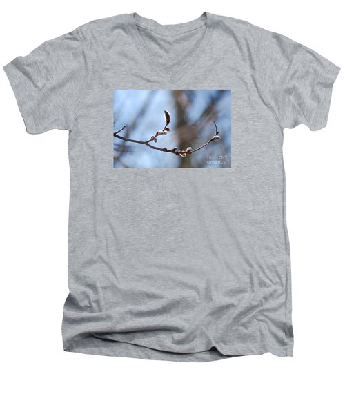 Men's V-Neck T-Shirt featuring the photograph Aspen Catkins 20120314_33a by Tina Hopkins