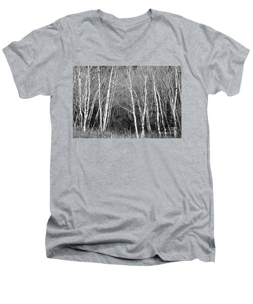 Aspen Forest Black And White Print Men's V-Neck T-Shirt